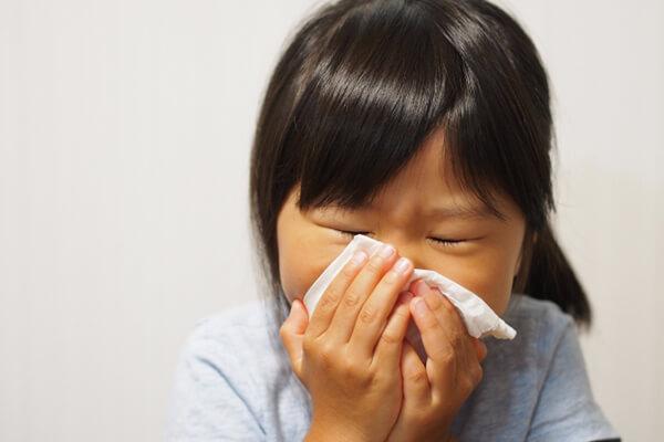 鼻の症状・病気を診させていただきます